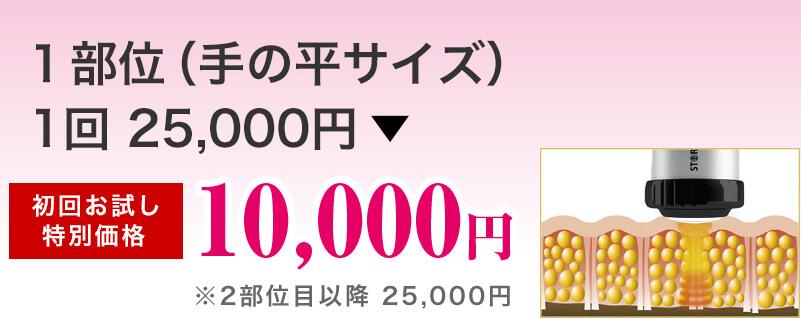 1部位(手の平サイズ)1回 初回お試し特別価格 10,000円