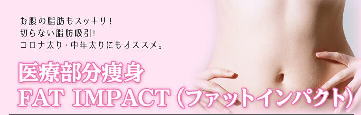 医療部分痩身 FAT IMPACT(ファットインパクト)